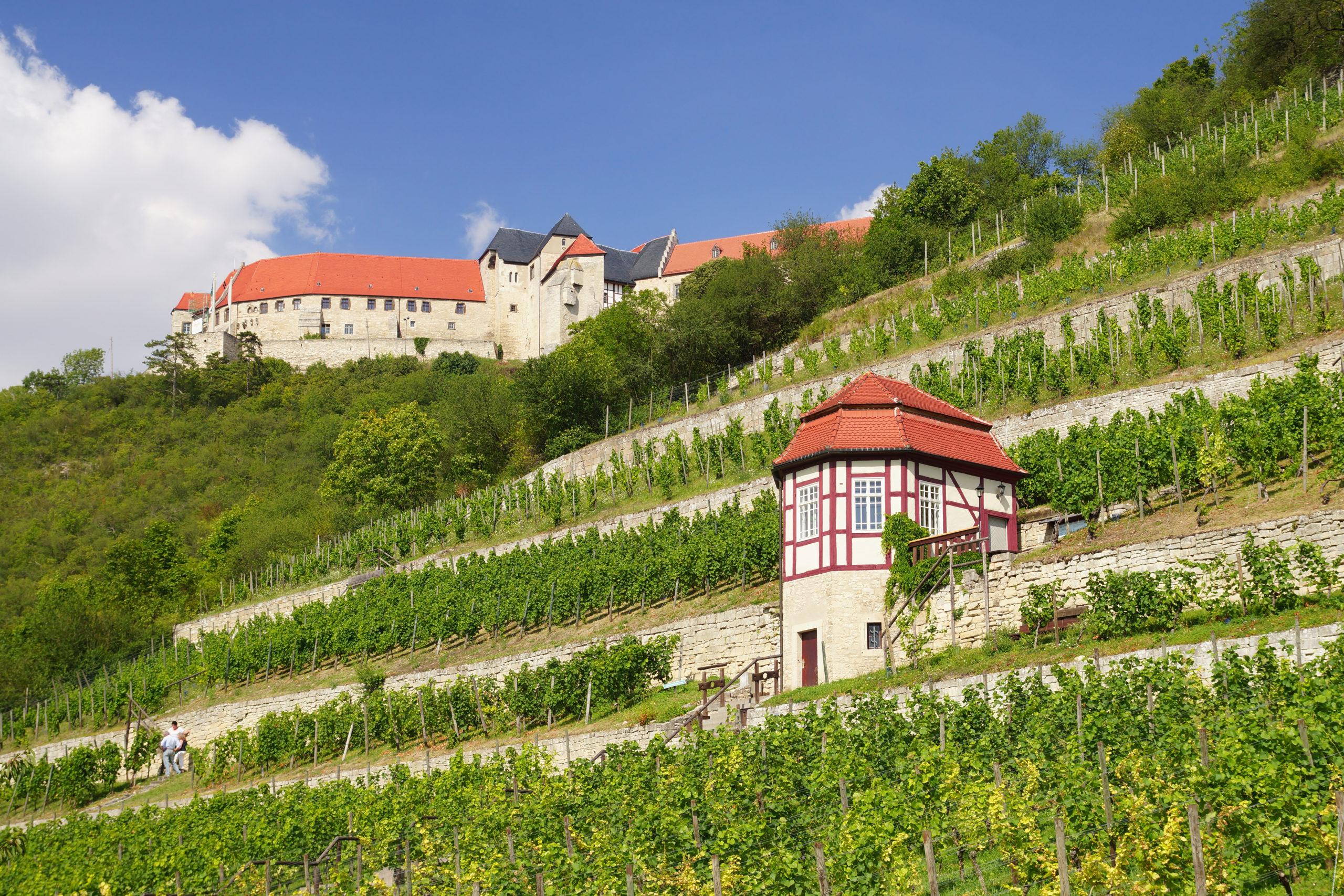 Alte neue Weinregionen